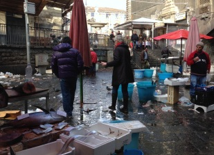 Careful walk thru Catania fishmarket
